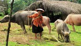 Travelers with Grand Vietnam-Cambodia tour