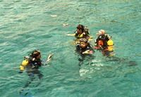 TOURISTS IN Cham Island Diving Tour